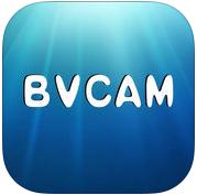 BVCAM�件pc客�舳�