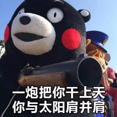喊表情熊本熊qq老公免费版没有聊天表情包图片