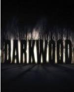 阴暗森林简体中文版(Darkwood)