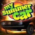 我的夏季汽车七项修改器+7