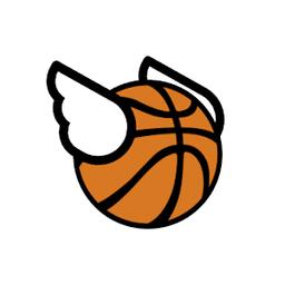 飞扬的篮球全皮肤解锁版