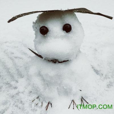 旅行青蛙雪人图片(附原图) 高清无水印版 0