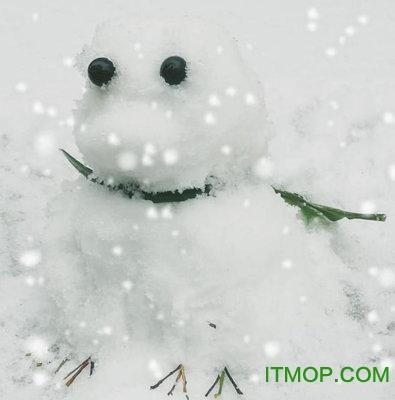 旅行青蛙雪人表情包
