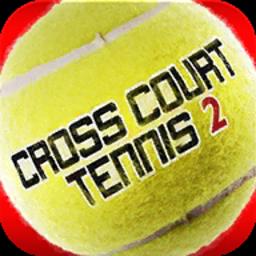 跨界网球2破解版