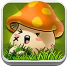 天天打蘑菇