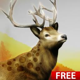 狩猎挑战(Hunting Challenge)