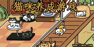 猫咪养成游戏