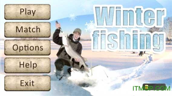 冬季捕鱼3D版 v1.0 安卓版 0