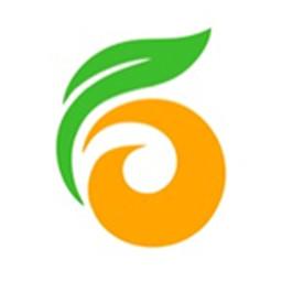 金柿子工装平台
