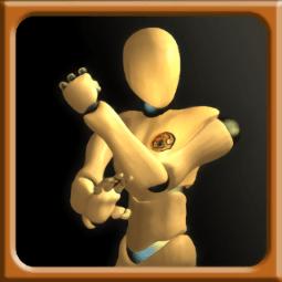咏春拳师(Wing Chun Trainer)