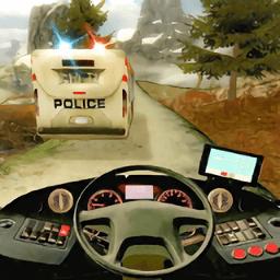 真实警车追逐赛