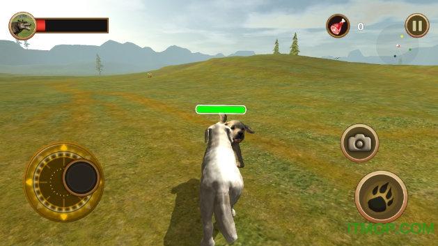牧羊犬模拟器游戏 v1.0 安卓版 3