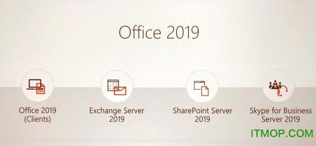microsoft office 2019 专业增强版 0
