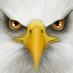 终极鸟模拟器破解版