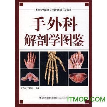手外科解剖学图鉴pdf