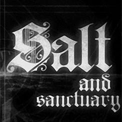 盐和避难所手机版