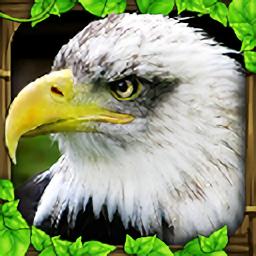 模拟猎鹰中文版