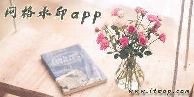 网格水印app