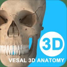 维萨里3d解剖全解锁破解版