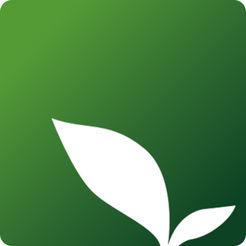 绿芽母婴平台