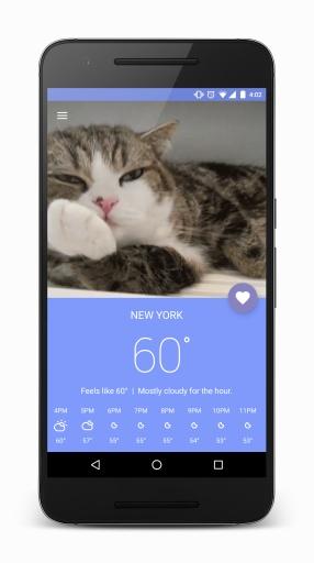 猫咪天气(Meowzr) v1.1 安卓版3