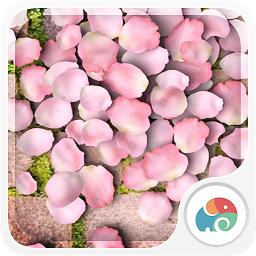 3D花瓣舞梦象动态壁纸