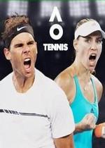 澳洲国际网球3dm中文补丁