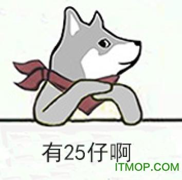 秦川mr.quin表情包  3