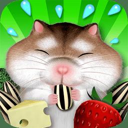 饥饿的仓鼠