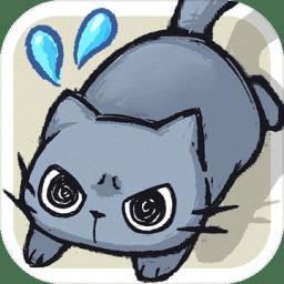 天天躲猫猫手机版