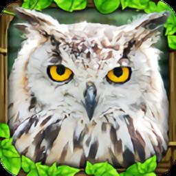终极猫头鹰模拟器完美版v1 安卓版