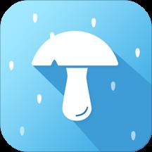 蘑菇天气软件