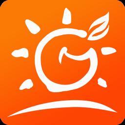 江安橙乡网软件