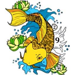 锦鲤鱼的染色