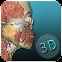 人体解剖学图集3d彩图