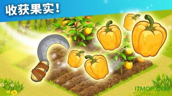 家庭岛内购破解版(Family Island) v202006.1.7513 安卓版 2