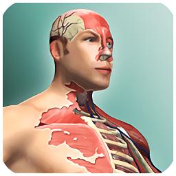 人体模型无限钻石