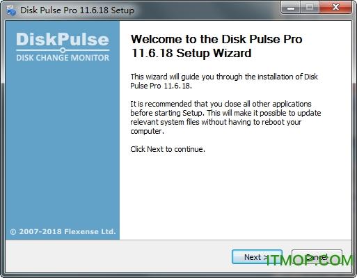 Disk Pulse Pro(磁�P�z�y工具) v11.6.18 正式版 0