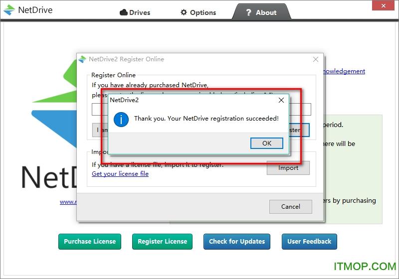 NetDrive 破解版