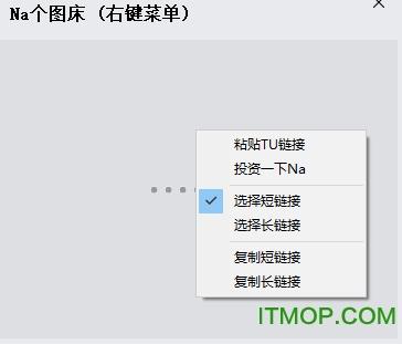 Na个图床 v1.0 免费版 0