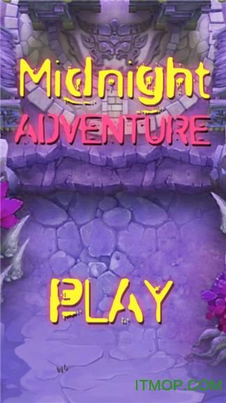 午夜冒险(Midnight Adventure) v1.1 安卓版 0
