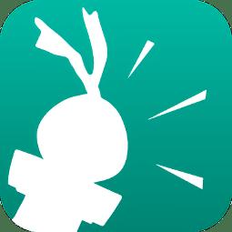 �����Z音app