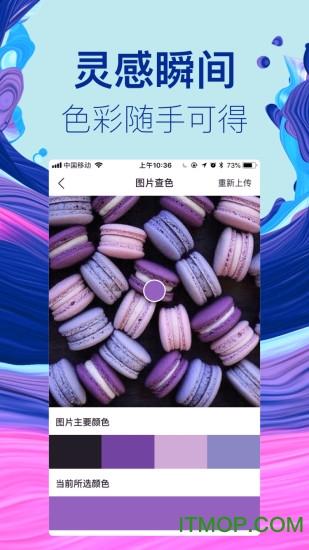 蜥奇(智能色彩管理专家) v1.5.0 安卓版 2