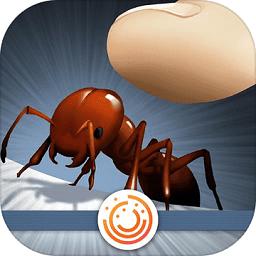 蚂蚁中毒(Ant Holic)