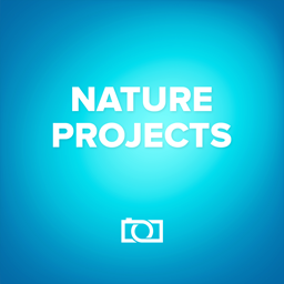 nature projects(天气效果滤镜)