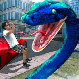 愤怒的蟒蛇2019