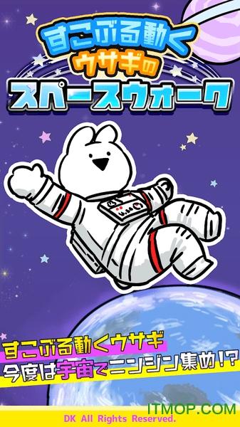 太空漫步兔子
