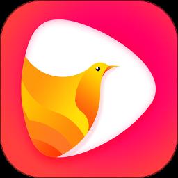 鸽迷v1.0.3 安卓版
