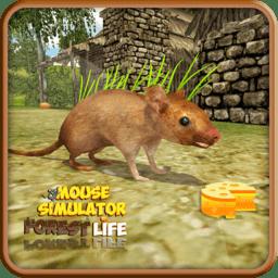 新老鼠模拟器