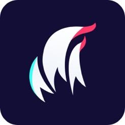 耍启v1.0 安卓版